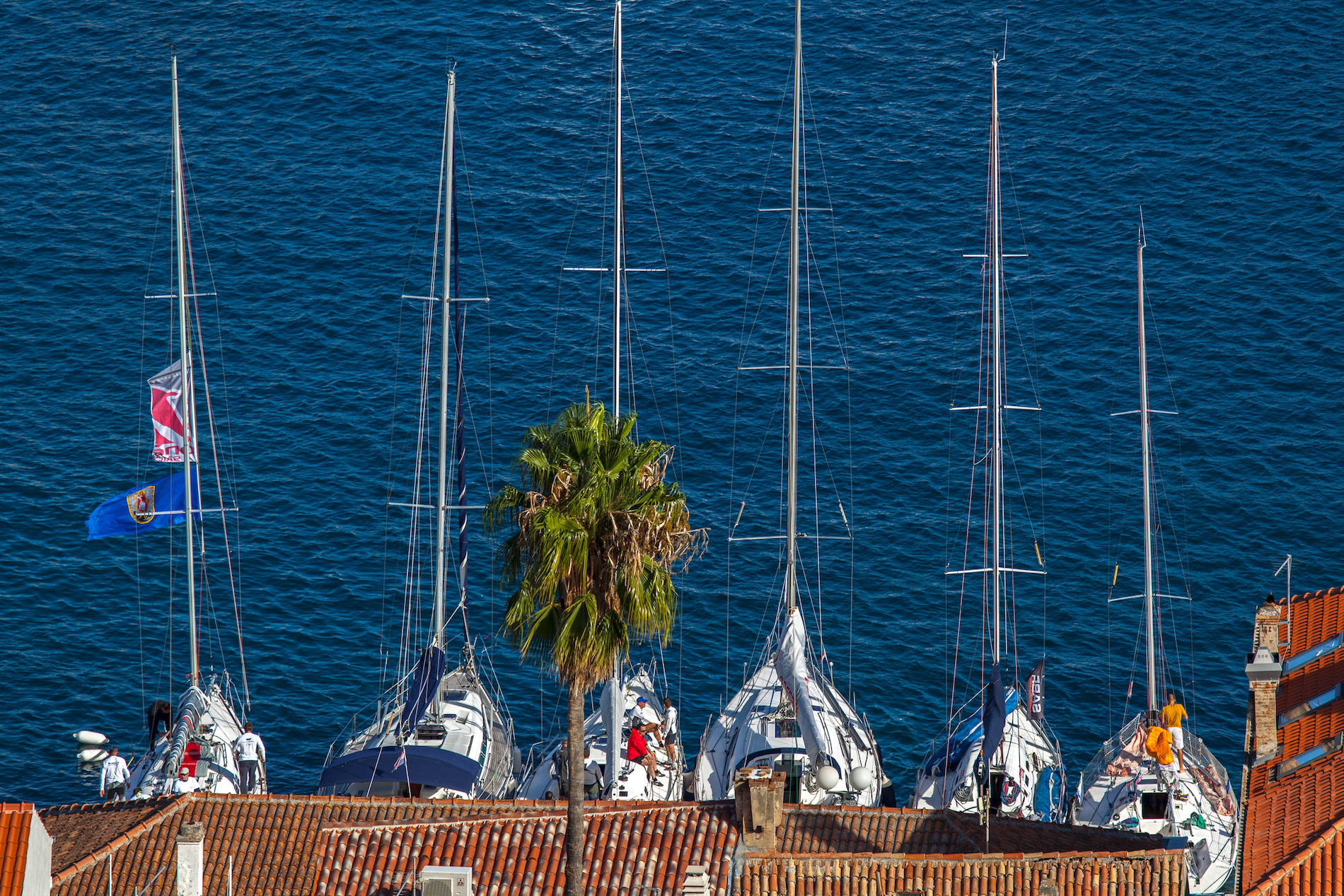 Sailing Boats Town of Vis